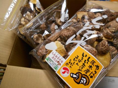 国産原木椎茸