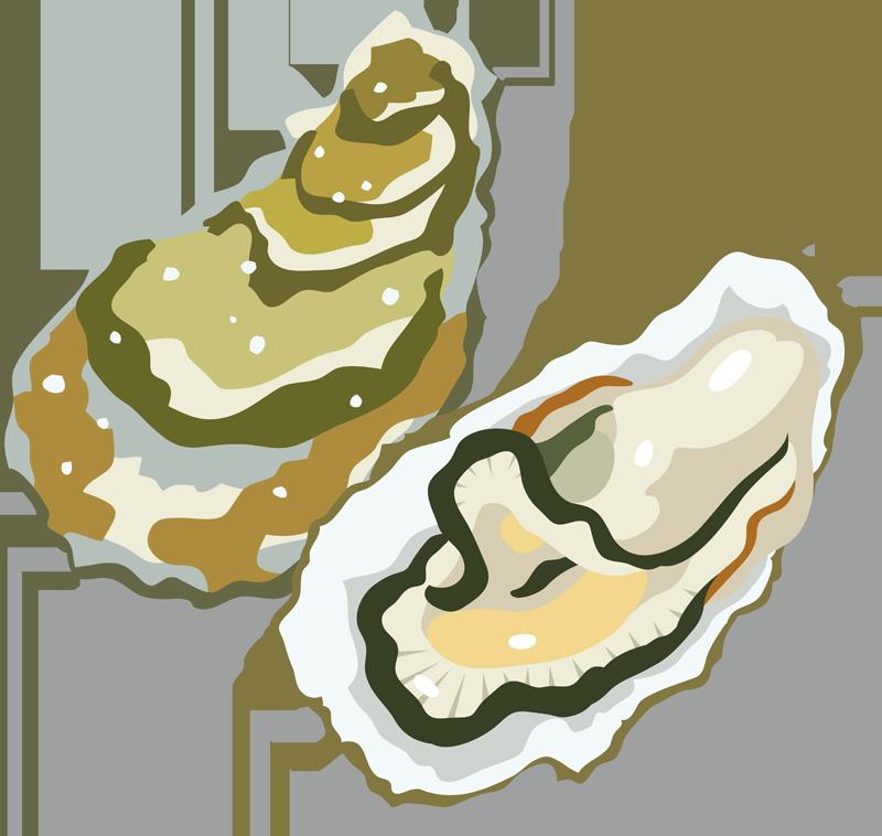 牡蛎(カキ)の激安通販