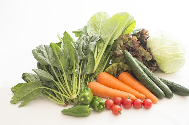 野菜・ベジタブル